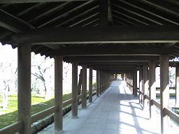 東福寺歩廊.JPG